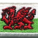 Flag of Wales Welsh red dragon celtic applique iron-on patch Small S-383 WE SHIP ANYWHERE FOR FREE!