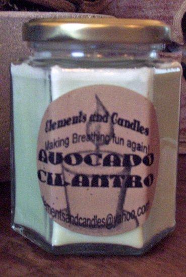 Avocado Cilantro