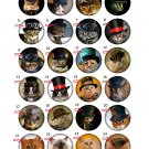 "Take any 3 1.25 inch Pinback Button Badge Steampunk Cats 1.25"" (Aprox. 32mm)"