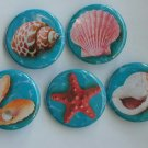 "Lot of 5 1.25"" Pinback Buttons Badges Seashells (Approx. 32mm)"