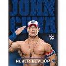 "WWE, John Cena 2.5"" x 3.5"" Fridge Flat Magnet #94121"