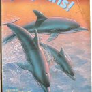 Dolphins!, Sharon Bokoske, Children Reading Reader Book, Step 2 Grades 1-3