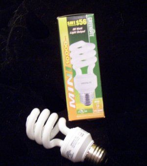 13 watt energy-efficient lightbulb, replaces 60 watts