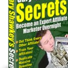Become An Expert Affiliate Marketer Overnight