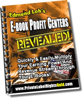 eBook Profit Centers Revealed