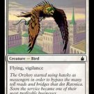 MTG - Ravnica - Courier Hawk x4 - NM - Magic the Gathering