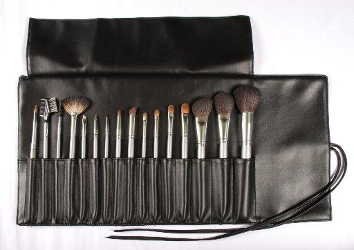 Suesh 16's Brush Set