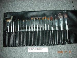Suesh 21's Brush Set