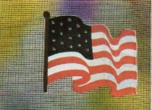 MAGNETIC WINDOW  SCREEN SAVER  DECORATIVE ORNAMENT AMERICAN FLAG
