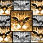 Cat Canvas Art - Submit YOUR dog!