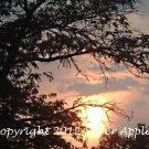 "Sunset Over Greyhound Station 8"" X 10"""