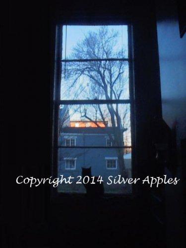 """Kitty In A Window 5"""" X 7"""""""