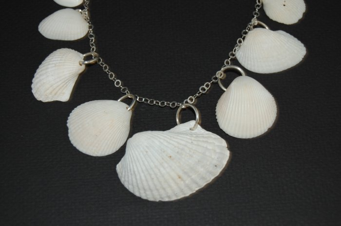 Large Shell and Silver Necklace