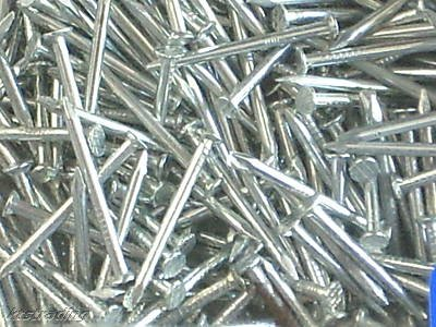 """450 pcs - 3/4"""" long nail"""