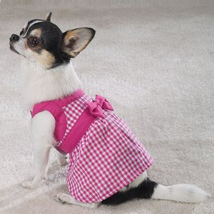 East Side Collection Gingham Dresses  Sz Small