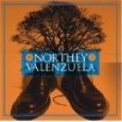 northey valenzuela - northey valenzuela CD 2006 lab fuel 2000 mint barcode punched