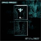 david bridie - act of free choice CD 2000 EMI used mint