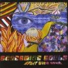 screaming souls - split wide open CD 2002 midwest artists used mint