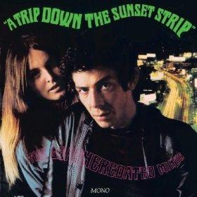 leathercoated minds - trip down the sunset strip CD acid symposium 12 tracks used mint