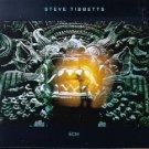 steve tibbetts - fall of us all CD 1994 ECM used mint