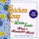 chicken soup for little souls - what a wonderful world - various artists CD 1998 kid rhino 15 tracks