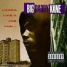 big daddy kane - looks like a job for ... CD 1993 cold chillin' 14 tracks used