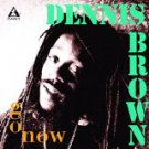 dennis brown - go now CD 1994 peter pan 9 tracks used mint