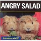 angry salad - the guinea pig ep CD breaking world 7 tracks used mint