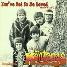 the montanas - you've got to be loved CD 1997 sequel castle 26 tracks used