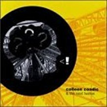 colleen coadic - scream of consciousness CD 1999 12 tracks used mint