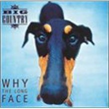 big country - why the long face CD 1995 castle 14 tracks used mint
