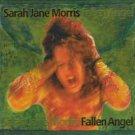 sarah jane morris - fallen angel CD 2000 irma blackheart 12 tracks used
