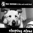 lee totten - sleeping alone CD 1996 ninibudu music 12 tracks used mint