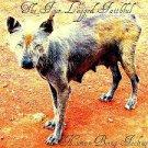 four legged faithful - human being feeling CD 2010 6 tracks used mint
