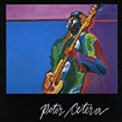 peter cetera - peter cetera CD 1981 2004 wounded bird 10 tracks used mint
