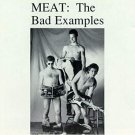 bad examples - meat CD 1993 waterdog 10 tracks used mint