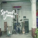 spoonful james - leave the door open CD 1998 a hundred souls 9 tracks used mint