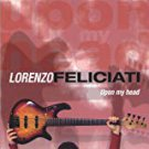 lorenzo feliciati - upon my head CD 2004 schoots 10 tracks used mint