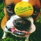 snot - get some CD 1997 geffen 15 tracks used mint