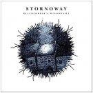 stornoway - beachcomber's windowsill CD 201 4AD warner 11 tacks new