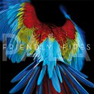 friendly fires - friendly fires CD 2011 XL recordings 11 tracks new