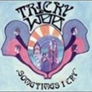 tricky woo - sometimes i cry CD 1999 sonic unyon 12 tracks used mint