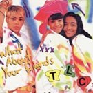 TLC - what about your friends CD 1992 la face 5 tracks used like new