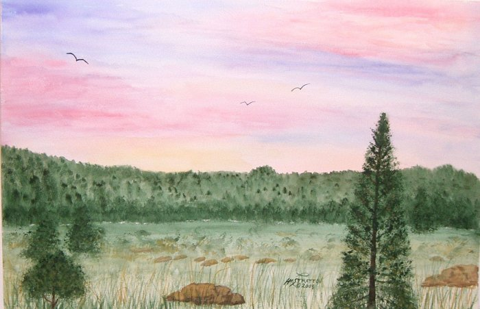 026 Birds in the Sunset