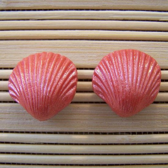 shell shaped coral stud earrings