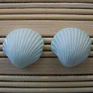 shell shaped mint stud earrings