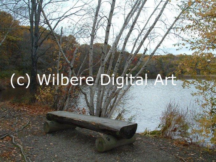 Digital Art JPG Photo Cutler Park Charles River Scene Early Fall Bench