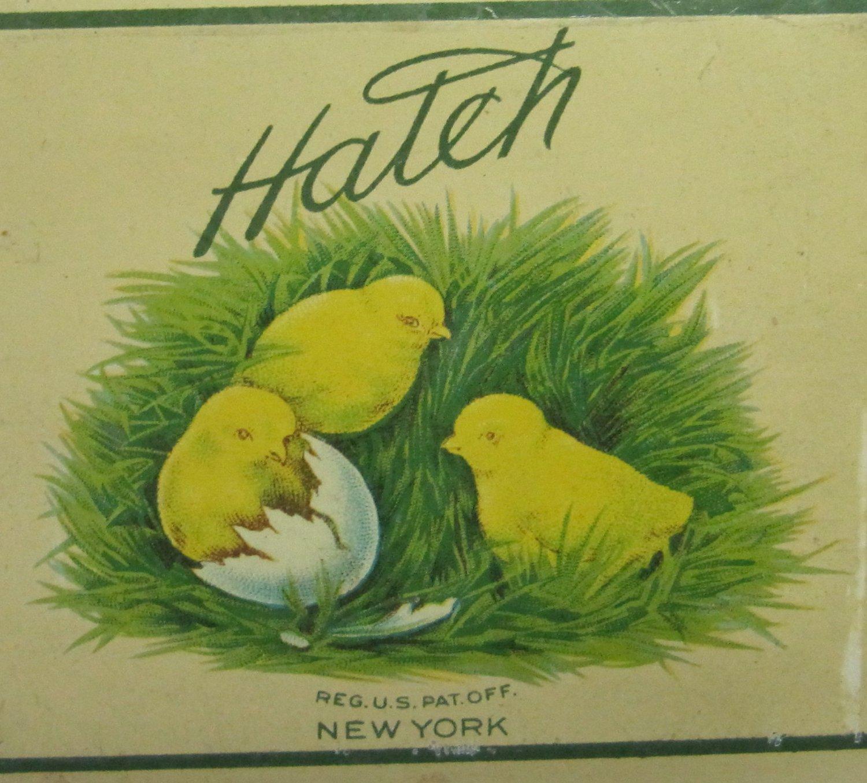 Vintage c 1920s Hatch New York Salto Mixed Nuts Tin Yellow Chicks 1/2 Pound Size Food Advertisement