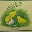 Vintage c 1920s Hatch New York Salto Mixed Nuts Tin Yellow Chicks 1/2 Pound Size Food Advertisement