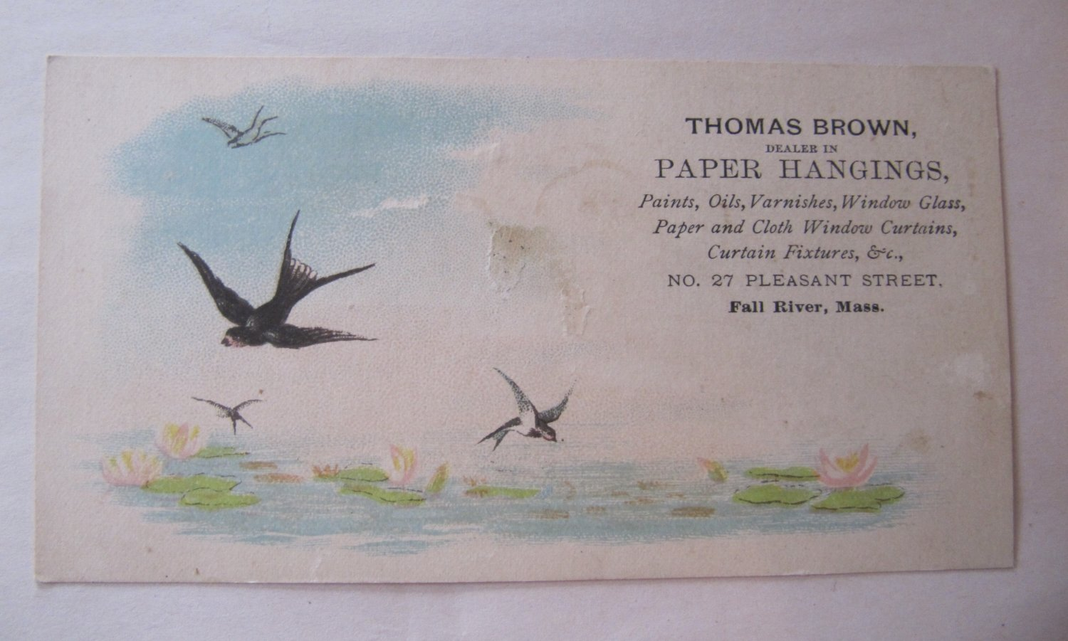 Rare c 1880s Antique Victorian Business Trade Card Thomas Brown Paper Hangings Fall River Birds